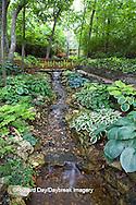 65021-028.10 Shade garden with stream on hillside, path, bridge, hostas, ferns,  St. Louis  MO