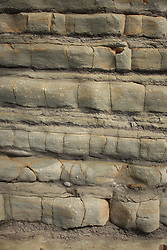Eroded Sandstone, Kalaloch Beach 4, Olympic National Park, Washington, US