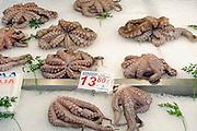 Griekenland, Athene, 5-7-2008Inktvis op de centrale markt. Deze zijn gevangen voor de kust van Mauretanie, Afrika.Foto: Flip Franssen