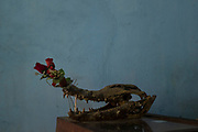 El craneo de un cocodrilo es usado para la decoración de un restaurant en Brasil.