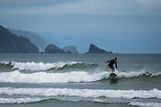 Surfers brave the cold waters to catch a wave.