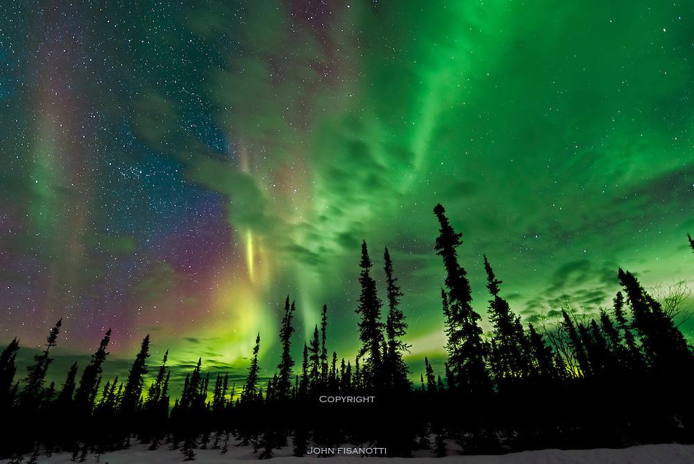 Aurora Borealis, Northern Lights from north of Fairbanks, Alaska