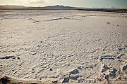 Bristol Lake a fields of Calcium Chloride outside Amboy, CA