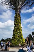 Singapore: Vertical gardens