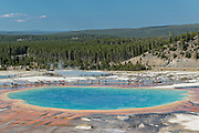 Grand Prismatic Spring the largest hot spring in Yellowstone National Park and third largest in the world. Grand Prismatic is about 250 by 300 feet in size, averages 160 degrees Fahrenheit and is up to 160 feet deep. The bright colors around the spring are from cyanobacteria mats. The Grand Prismatic Spring is part of the Midway Geyser Basin Excelsior Group in Yellowstone, Wyoming.