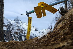 THEMENBILD - Beschädigter Nationalpark Wegweiser am Montag, 5. April 2021 // Damaged National Park trailhead sign on Monday, April 5, 2021. Kals, Austria. EXPA Pictures © 2021, PhotoCredit: EXPA/ Johann Groder