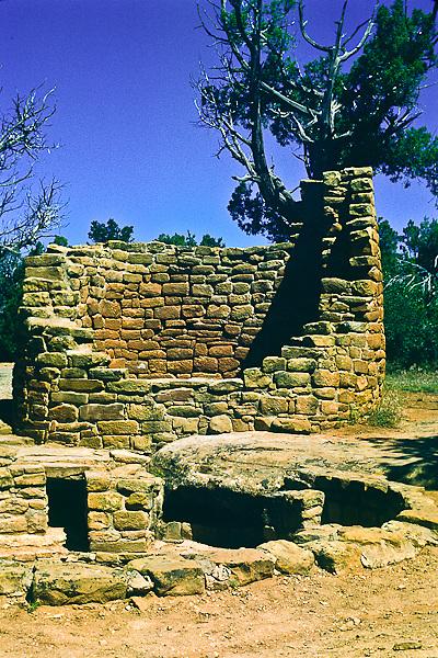 Cedar Tree Tower found on Chapman Mesa.  Mesa Verde National Park, Colorado.