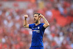 Chelsea's Cesc Fabregas celebrates victory at the final whistle