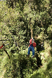 Chile, Lake Country: canopying or ziplining adventure sport on steel line through the canopy of the trees at Peulla..Photo #: ch619-33459..Photo copyright Lee Foster www.fostertravel.com, lee@fostertravel.com, 510-549-2202.