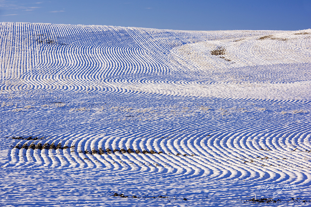 Mowing patterns and a frosted snowy landscape in autumn, Gildford, Montana, USA