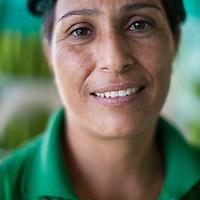 Doris Marchena prepares organic Fairtrade bananas in one of several processing plants at Fairtrade-certified banana producers APPBOSA in Samán, Marcavelica, Piura, Peru.