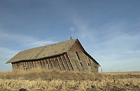 Barn leaning in prevailing wind, Alberta, Canada   Photo: Peter Llewellyn