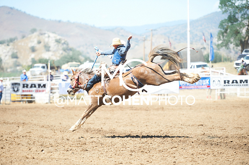 Saddle bronc rider Bryan Martinat of Marsing, ID rides -777 at the Woodlake Lions Rodeo.<br /> <br /> <br /> UNEDITED LOW-RES PREVIEW<br /> <br /> <br /> File shown may be an unedited low resolution version used as a proof only. All prints are 100% guaranteed for quality. Sizes 8x10+ come with a version for personal social media. I am currently not selling downloads for commercial/brand use.