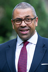 © Licensed to London News Pictures. 17/06/2019. London, UK. MP for Braintree James Cleverly speaks to the media in Victoria Tower Gardens.He is known to be backing Boris Johnson in the Conservative Party leadership contest.  Photo credit: George Cracknell Wright/LNP