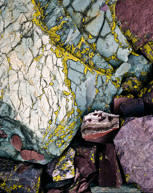 Red mudstone with lichens, Glacier National Park, Montana, USA