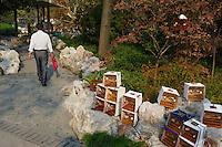 Chine, Shanghai, ambiance matinal au parc Fuxing, cage à oiseau //  China, Shanghai, Fuxing park, bird cage