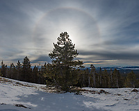 As I was packing up my tent this halo appeared around the sun. This is near the top of Sheep Mountain, Wyoming.