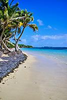 France, Martinique, Sainte-Anne, Cap Chevalier, la plage de l'Anse Michèle // France, West Indies, Martinique, Sainte-Anne, Cap Chevalier, the beach of Anse Michèle