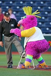 11 August 2012:  The Purple Party Dude shines one of the umpires shoes during a Frontier League Baseball game between the River City Rascals and the Normal CornBelters at Corn Crib Stadium on the campus of Heartland Community College in Normal Illinois.  The CornBelters take this game in 9 innings 7 - 2 with a 5 run 2nd inning.