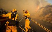 Firefighters battle the wildfire near Placenta Canyon Road in Santa Clarita, Calif., Sunday, July 24, 2016.(AP Photo/Ringo H.W. Chiu)