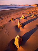 Dawn Light onSandstone Rocks,Point Reyes National Seashore, California
