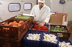 Greengrocer sorting fresh vegetables,
