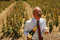 """Director Ghislain de Mongolfier, in the """"Chaude Terre"""" Vineyard,  Bollinger Champagne, Ay, France....The grapes from this vineyard is used for the exclusive Bollinger Vieilles Vignes Francaises....photograph by Owen Franken for the NY Times....assignment number 30024675A....June 6, 2006.. ........................................"""
