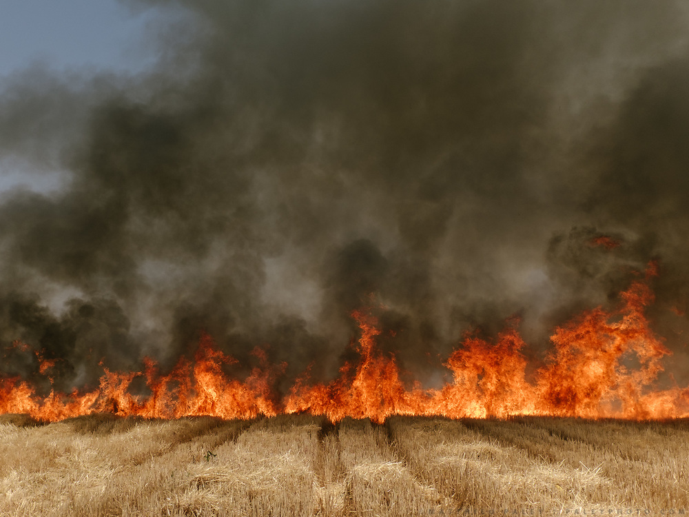 India's water issue is reflected in terrible drought. Fire in a wheat field.