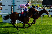 Petrastar ridden by Adam Kirby and trained by Clive Cox  - Ryan Hiscott/JMP - 19/04/2019 - PR - Bath Racecourse- Bath, England - Race 6 - Good Friday Race Meeting at Bath Racecourse