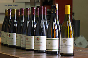 st peray and cornas for tasting in cellar dom a voge cornas rhone france
