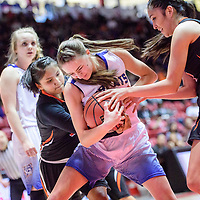 Gallup Bengal Ashia Smith (5), left, Bloomfield Bobcat Mattie Waresback (5) and Journey Gillson (4) fight for a possession during a District 5A semifinal at The Pit in Albuquerque Thursday.  The Bengals fell to the Bobcats 59-56.