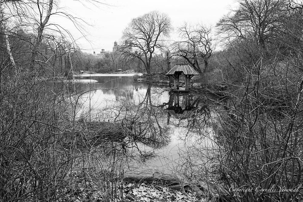 Mid-March in Central Park and all is quiet