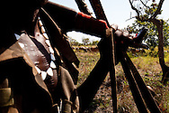 A Jie warrior watches cattle outside of Boma.