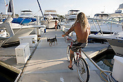 Ernie Johnson cycles at the dock near his 38 foot sailboat at Dana Point Harbor, California. (Ernie Johnson is featured in the book What I Eat: Around the World in 80 Diets.)