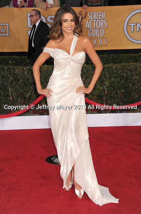 LOS ANGELES, CA - JANUARY 27: Sofia Vergara arrives at the 19th Annual Screen Actors Guild Awards at the Shrine Auditorium on January 27, 2013 in Los Angeles, California.
