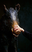 Hand touching the Lucky pig in Florence