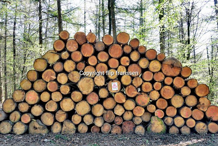Nederland, Groesbeek, 4-5-2019Afgelopen weken zijn er in de bossen rond Groesbeek veel bomen gekapt . Met harvesters, machines die de bomen in een keer kunnen zagen, onttakken en in stukken verdelen, worden open plekken in het bos gemaakt. De grond wordt omgewoeld en stronken uitgefreesd. Staatsbosbeheer en natuurmonumenten noemen dit oogsten van hout noodzakelijk om de biodiversiteit in de bossen te herstellen en ruimte te geven voor andere soorten flora en fauna, planten en dieren. Er is veel kritiek op het grootschalig kappen van bomen in de bossen. De versnipperde boomstammen worden als biomassa opgestookt in een biocentrale, biomassacentrale ..Foto: Flip Franssen