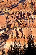 Morning light on the Cedar Breaks Amphitheater from Chessman Ridge, Cedar Breaks National Monument, Utah
