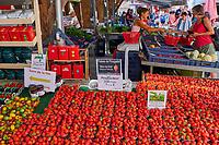 France, Loire-Atlantique (44), Le Pouliguen, le marché // France, Loire-Atlantique, Le Pouliguen, the market
