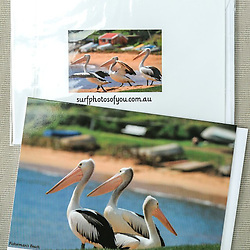 Fishermans Beach 3 Pelicans