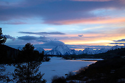 Grizzly Bear, Sunset, Oxbow Bend, Grand Teton National Park
