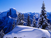 Red fir, Abies magnifica, forest and Half Dome on a crisp and clear winter day, view from near Glacier Point, Yosemite National Park, California.