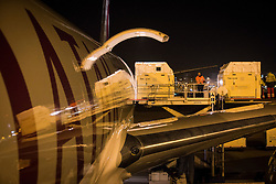 Flying stalls being put on the plane <br /> Departure of the horses to the World Cup Finals in Las Vegas from Schiphol - Amsterdam 2015.<br />  © Hippo Foto - Dirk Caremans