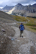 Daniel Fagre Ph.D. walks along Hidden Lake Trail which runs along the edge of a lateral moraine at Logan Pass, Glacier National Park, Montana , Tuesday, October 7, 2014. The Garden Wall is in the distance.