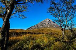 Buachaille Etive Mòr seen from the end of Glen Etive, Highlands of Scotland<br /> <br /> (c) Andrew Wilson   Edinburgh Elite media