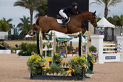 Pasmore Catherine (USA) - Vandavid<br /> Horseware GP CSI 2*<br /> Wellington 2012<br /> © Hippo Foto - Cealy Tetly