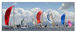 Brewin Dolphin Scottish Series 2011, Tarbert Loch Fyne - Yachting.Class 3 downwind.IRL1141 ,Storm ,Pat Kelly ,Rush SC ,J109, IRL725 ,Bengal Magic ,Moorehead/Ferres  ,RUYC ,J35,.GBR1433R ,Salamander XX ,John Corson ,CCC ,Corby 33, and GBR7508R, Acrewed Interest, Keith Lord, Douglas Bay YC, A35.