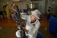 2008 Black Pudding Champion