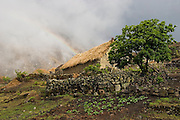 A rainbow appears over thatch roof stone huts and gardens in the traditional village of the Q'eros, high in the Cordillera de Paucartambo, Andes Mountains, Peru. The Q'eros, a Quecha people, are considered the last direct descendants of the Incas and proudly maintain many of their ancient traditions. Most Q'eros live at higher elevations during the dry season to herd alpaca, but potatoes (shown) and other staples are grown in this village, at a lower altitude of 11,000 feet...
