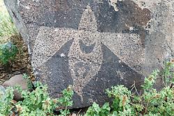 Bird petroglyph, Ladder Ranch, New Mexico, USA.